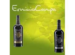 Campa Wines